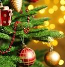 Вітання з Новим роком та Різдвом Христовим від Іванни Дубинки-Філозоф